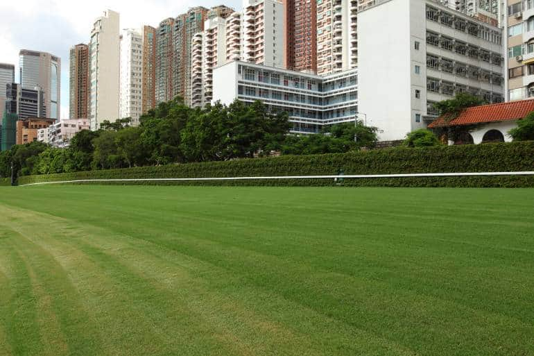 Horse Racing Track Happy Valley